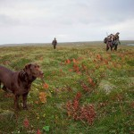 jagers-met-hond-foto-wikimedia-use-creative-commons